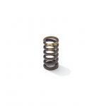 OW clutch spring